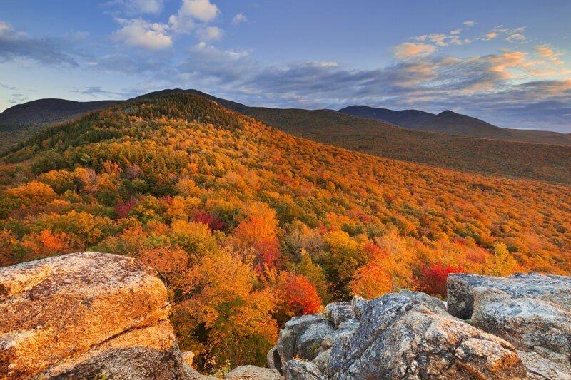 美國-白山國家森林公園
