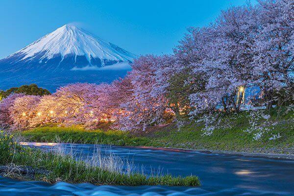 東京御殿場平和公園