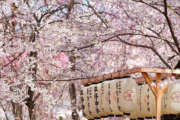 神奈川鎌倉鶴岡八幡宮