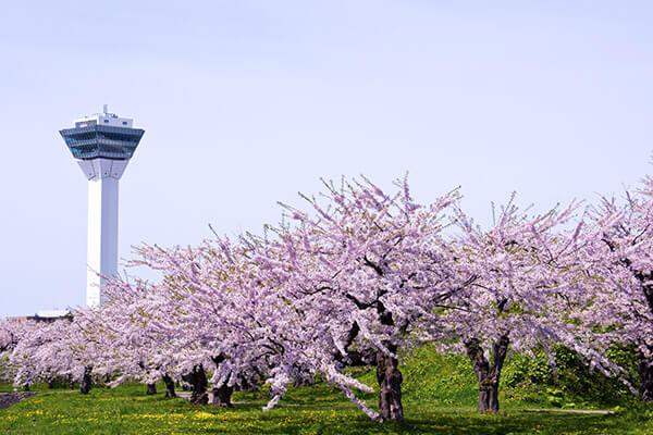 函館五稜廓公園