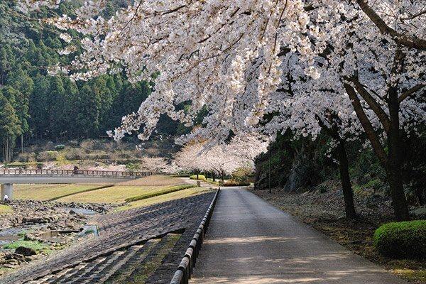 福岡西公園