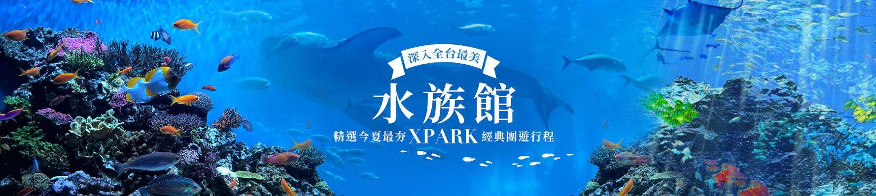 XPARK.開箱全台最美水族館