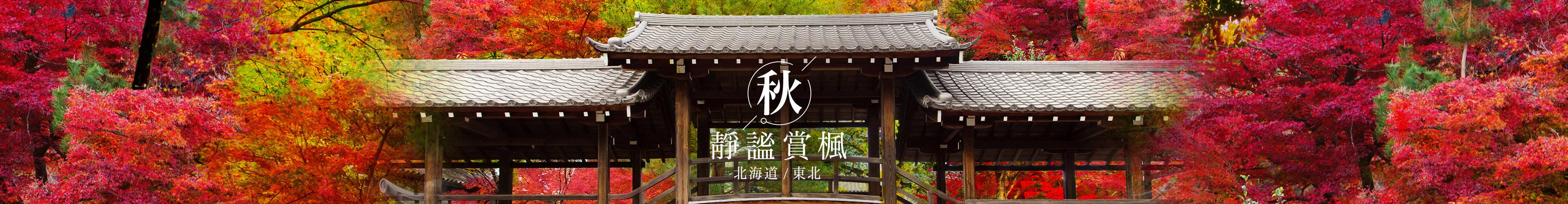 日本賞楓早鳥