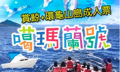 【宜蘭】噶瑪蘭號賞鯨+環龜山島行程券