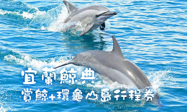 【宜蘭】鯨典烏石港賞鯨+環龜山島行程券