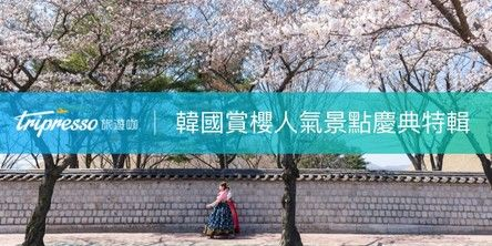 韓國賞櫻攻略|一起去韓國賞櫻吧!花期預測、韓國必去櫻花景點告訴你
