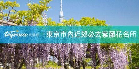 東京紫藤花特輯 東京市內、東京近郊必去紫藤花名所精選