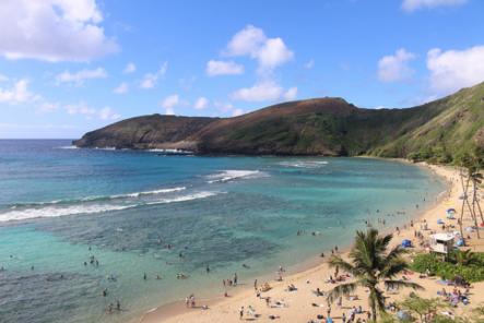 【美國夏威夷】夏威夷跟團、自由行必知的行前準備、交通、景點懶人包